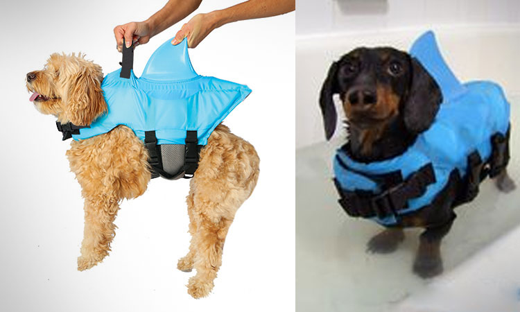 shark-fin-dog-life-jacket-6670
