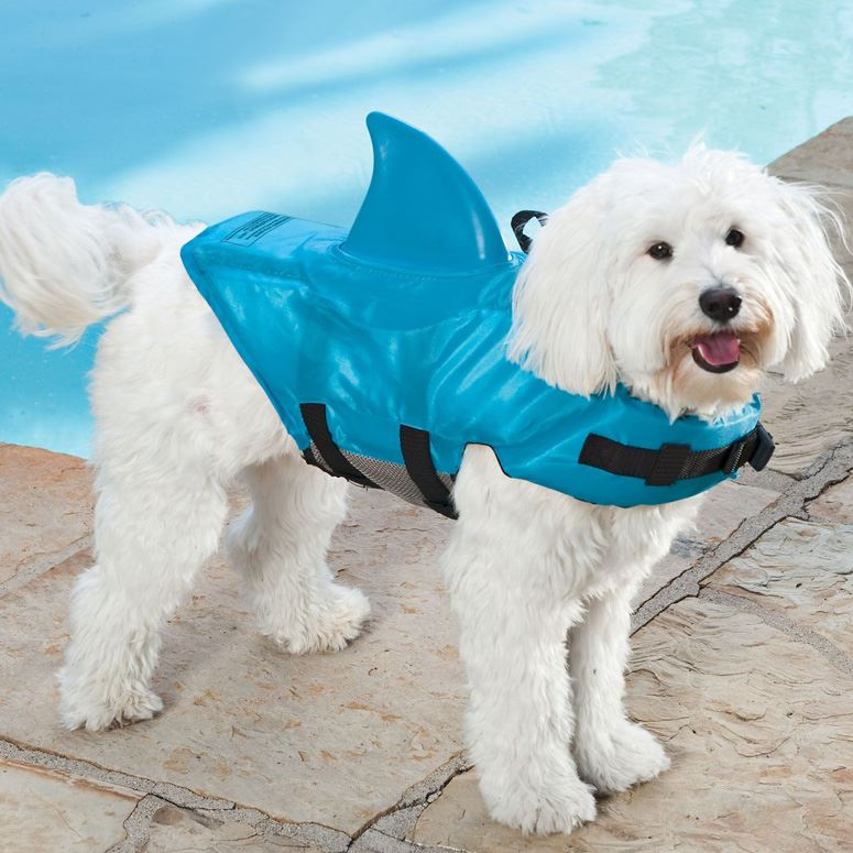 shark-fin-life-jacket-for-dogs-xl